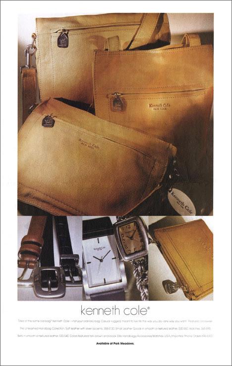 Taphorn Design - Joslins Ad Design